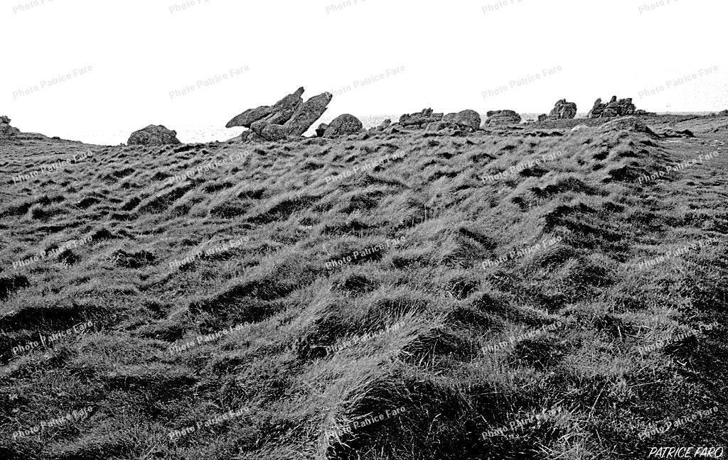 paysage Breton en noir et blanc - Photo Patrice Faro