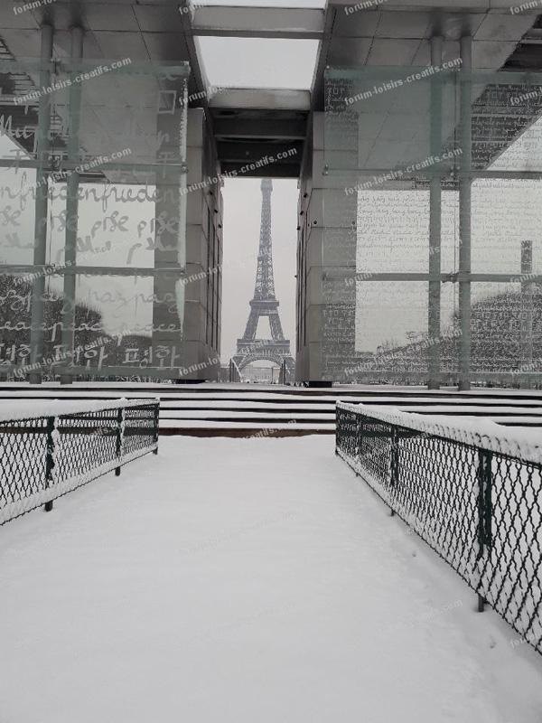 la tour Eiffel sous la ne